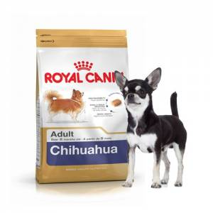 Royal Canin Chihuahua Adulte