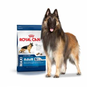 Royal Canin Maxi Mature 4kg