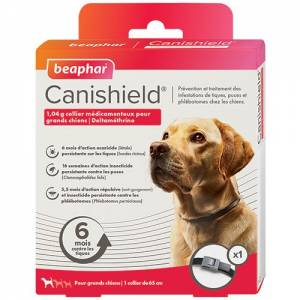 Collier canishield grands chiens