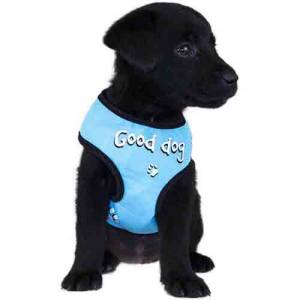 "Harnais tee-shirt nylon fantaisie doogy bleu ""Good Dog"""