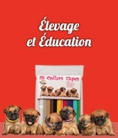 Elevage et Education